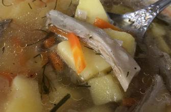 Суп грибной летом и зимой